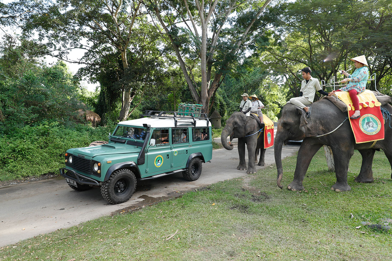 Safari Information | Bali Safari Park
