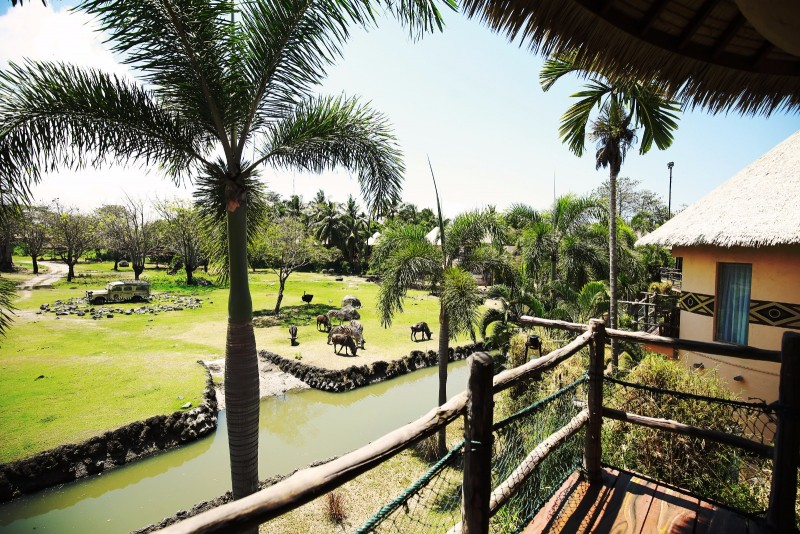 Wisata Hewan di Bali