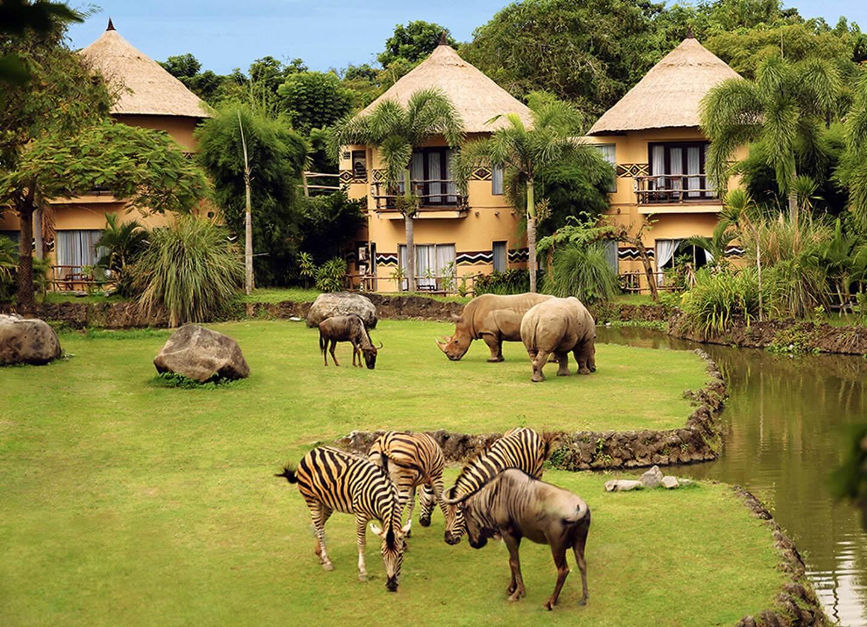Stay at Bali Safari Park