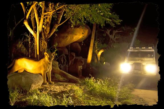 bali safari park book direct and save 10%Op Safari.htm #19