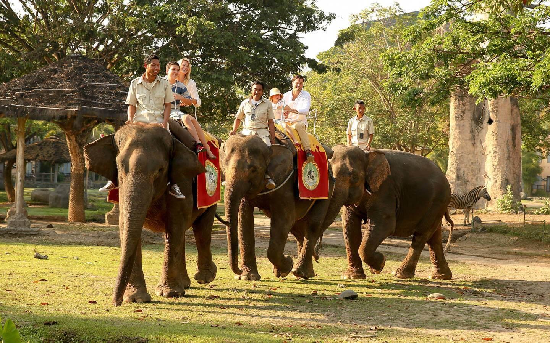 Elephant Back Safari Package | Bali Safari Park