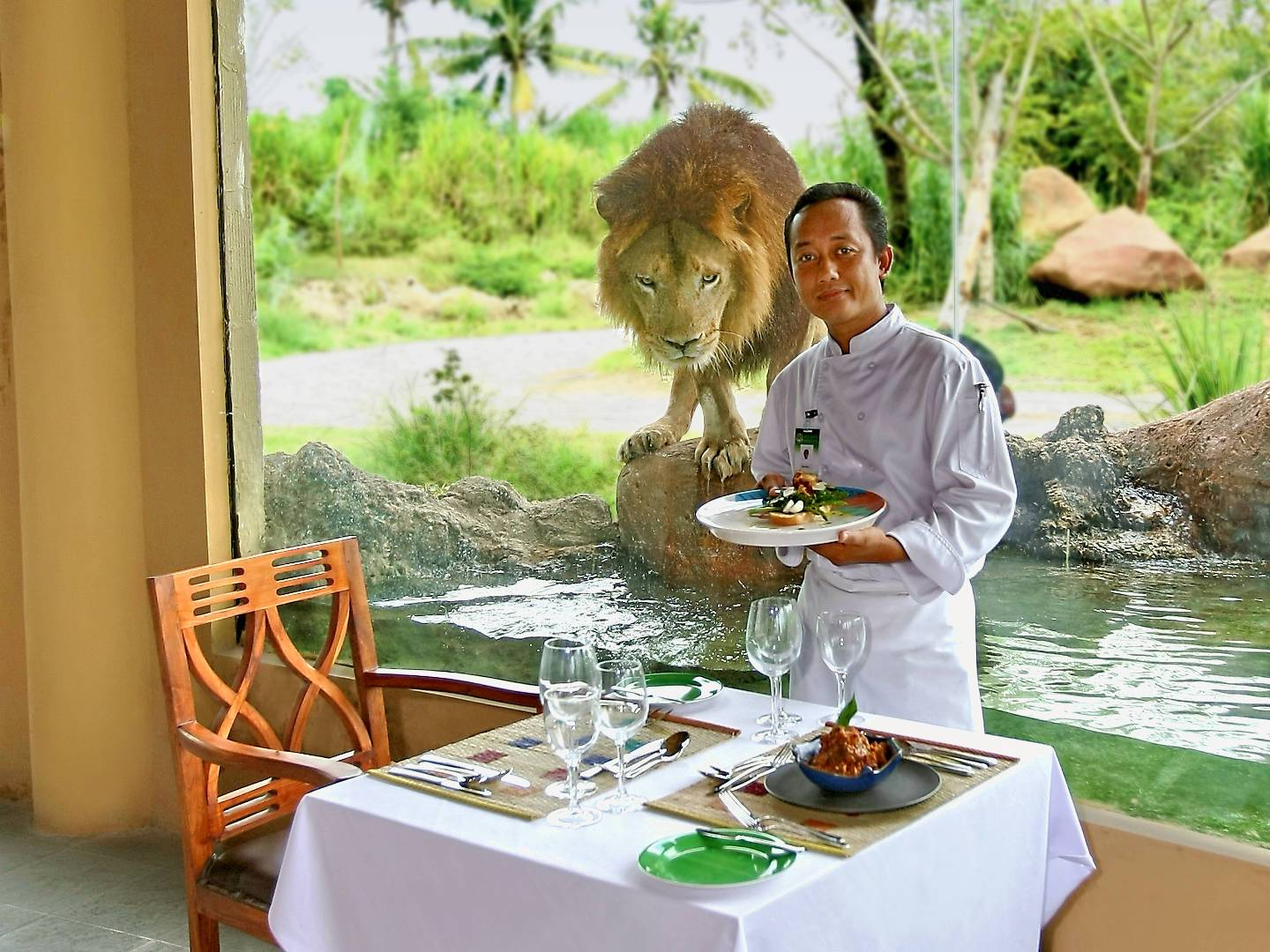 Restaurants | Information | Bali Safari Park