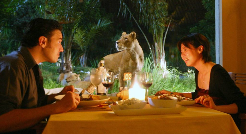 dinner in bali safari park