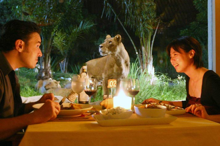 A-Bali-Safari-Adventure-That-Your-Kids-Will-Love-3