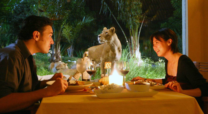 African Animals in Bali Safari Park Dining with the Lion