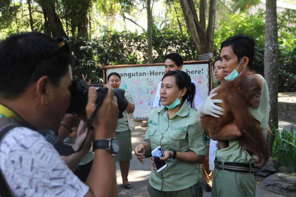 bonbon orangutan day